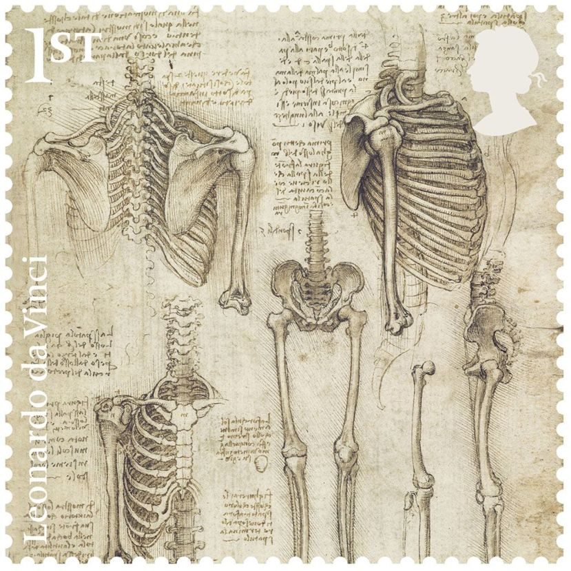 leonardo_the_skeleton_stamp__1000_1